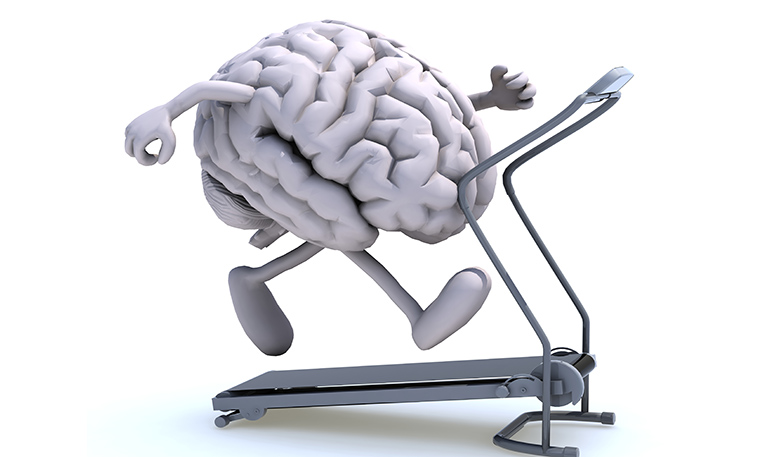 Your Brain Fitness