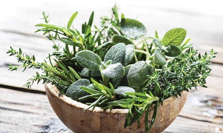 The Wonder of Herbs