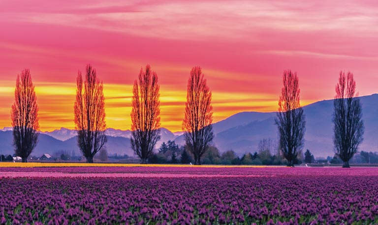 Return of the Sunday Drive – A Trio of Spring Day Trips