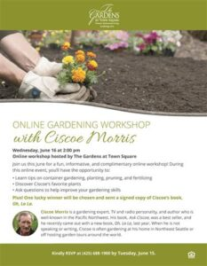 Online Gardening Workshop with Ciscoe Morris @ The Gardens at Town Square |  |  |